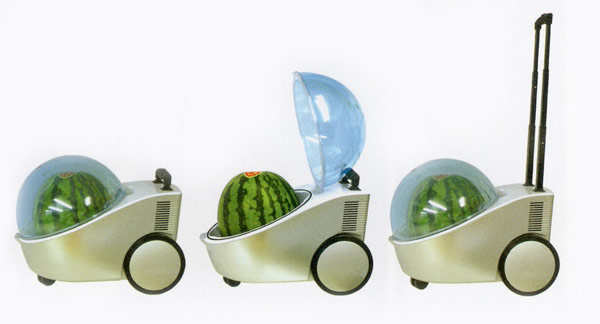 Watermelon Cooler Push Cart