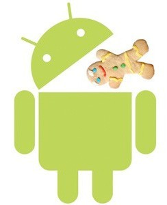 Android 3.0 due to start hitting tablets in December, launch in January
