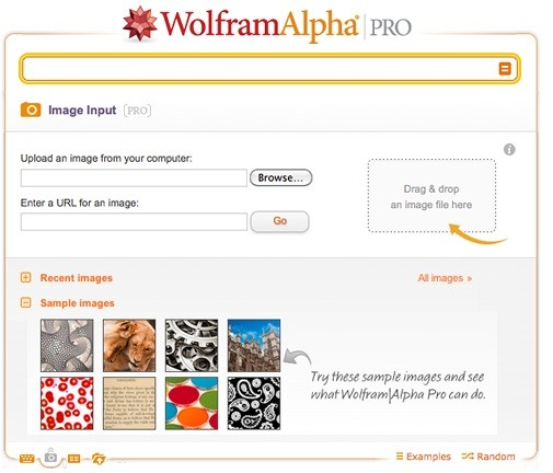 Wolfram-alpha-pro