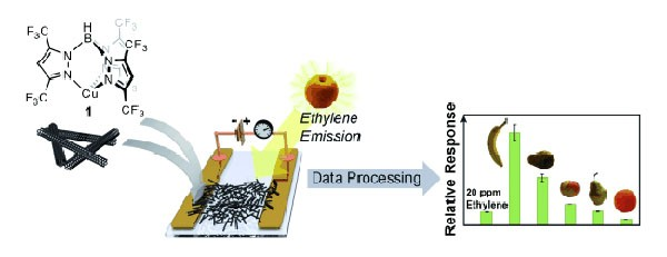 MIT-research-nanotubes-detect-rotting-produce
