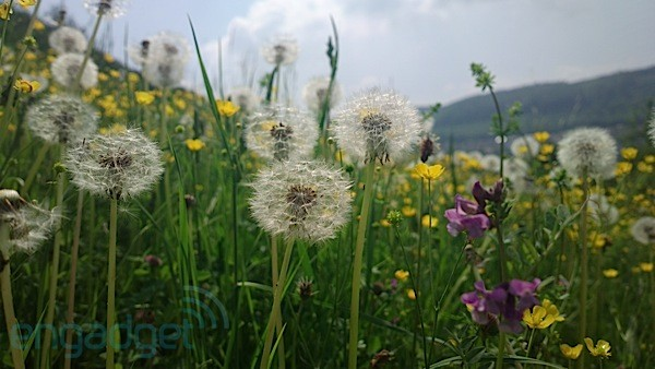 Nokia 808 PureView sample images: a moveable feast in 41 megapixels