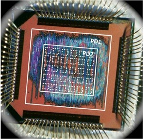 rice inexact chip TECHPULSE May 19, 2012