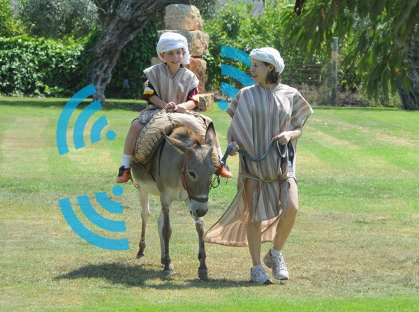 Israeli donkeys get WiFi-equipped for historical theme park