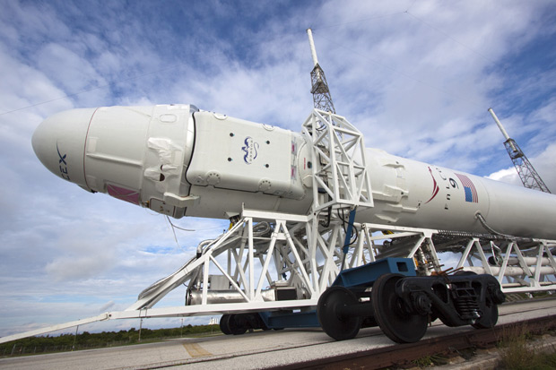 SpaceX Dragon capsule, Falcon 9 launch gets go signal from NASA