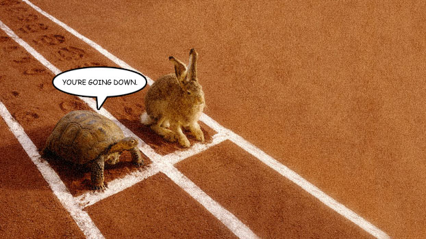 Editorial Turning point for the tortoise and the hare
