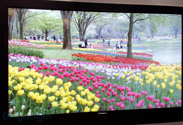 Westinghouse 110inch 4K TV to ship in Q1 alongside 65, 55 and 50inch models
