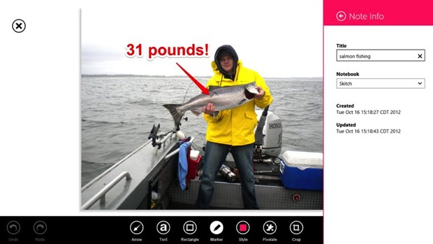 DNP Skitch for Windows 8 update adds portrait mode editing for tablets and large file compatibility