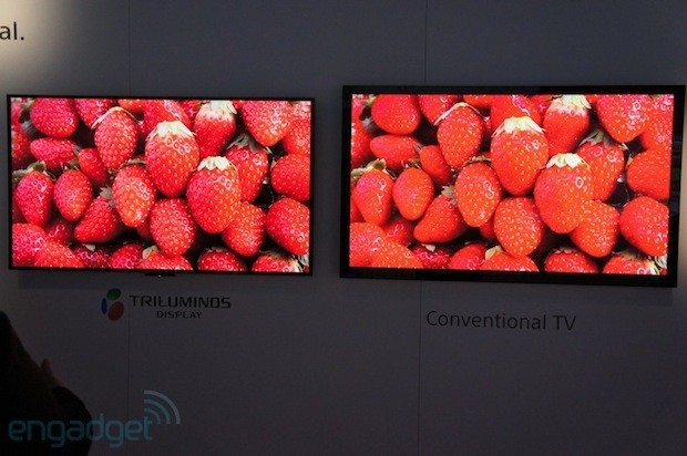 Quantum dots power the return of 'Triluminos' RGB LED lighting to Sony's 2013 HDTVs