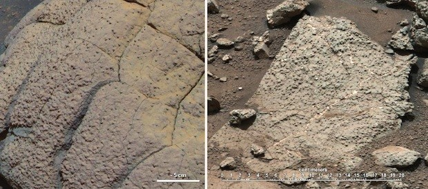 Curiosity rover finds conditions on Mars that could have supported living microbes