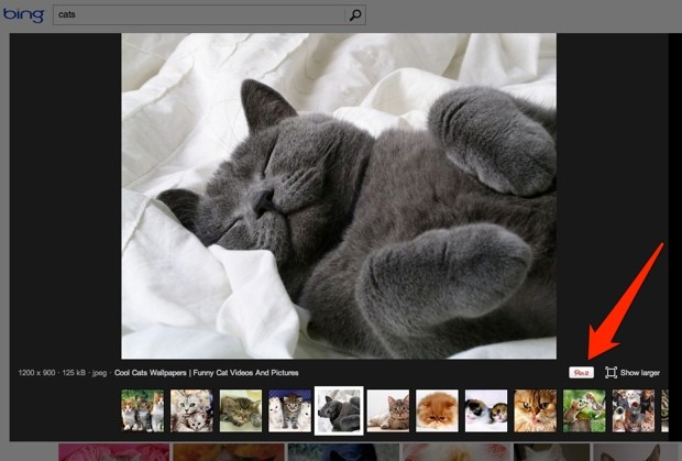 Microsoft makes Bing image search more social with one-click sharing to Pinterest