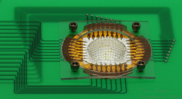 Camera inspired by insect eyes can see 180degrees, has almost infinite depth of field