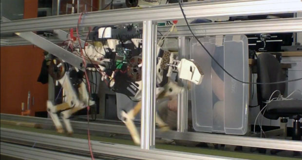MIT's own cheetah robot runs faster, more efficiently video