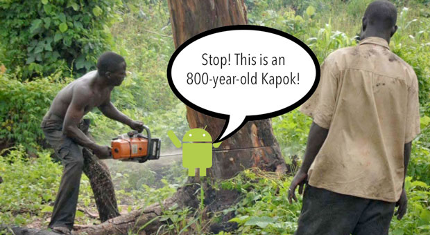 Discarded Android phones protect rainforests from loggers