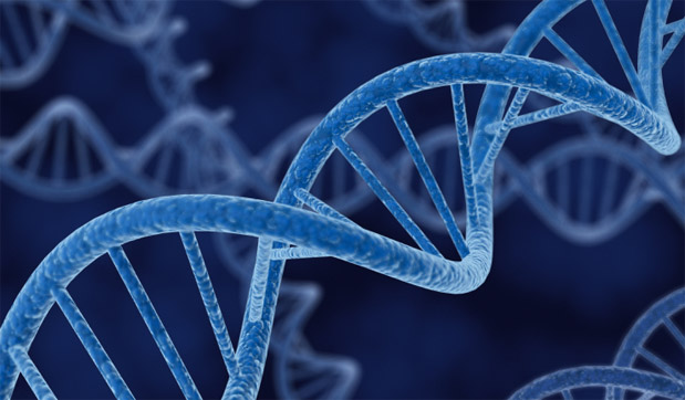 DNP Supreme Court rules that naturally occurring genetic material cannot be patented