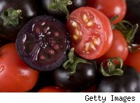 Purple genetically modified tomatoes