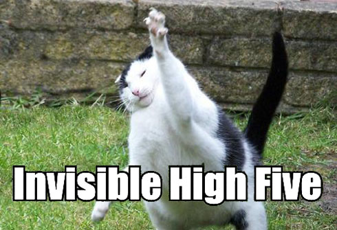 [Image: lolcat-high-5.jpg]