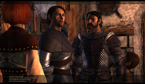 Dragon Age: Origins shots show character  origins