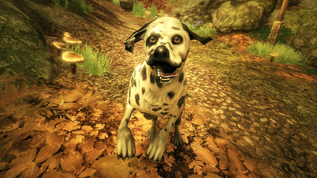 Fable  New Dog Breeds