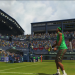 Virtua Tennis 2009 (360, PS3)