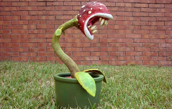 Terrify your neighbors with a real piranha plant for Plante mario