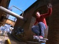 Skate 3 (360, PS3)