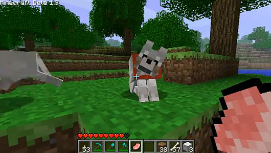 Minecraft (This game is beta but so addictive!) Wolfpet