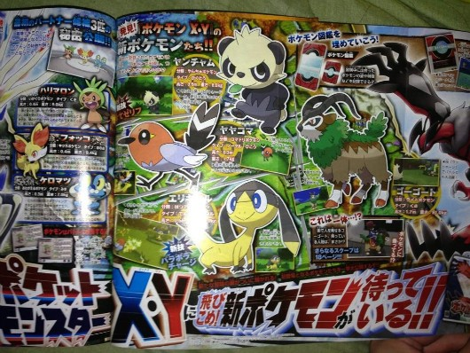 Pokemon X and Y gets four new characters of various types