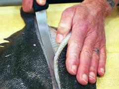 How to Fillet a Flatfish Such as Flounder