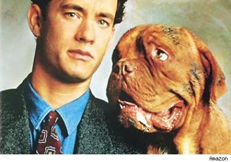 turner and hooch wallpapers
