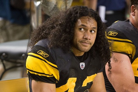 [Image: troy-polamalu-hair1.jpg]
