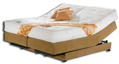 Hollandia Beds