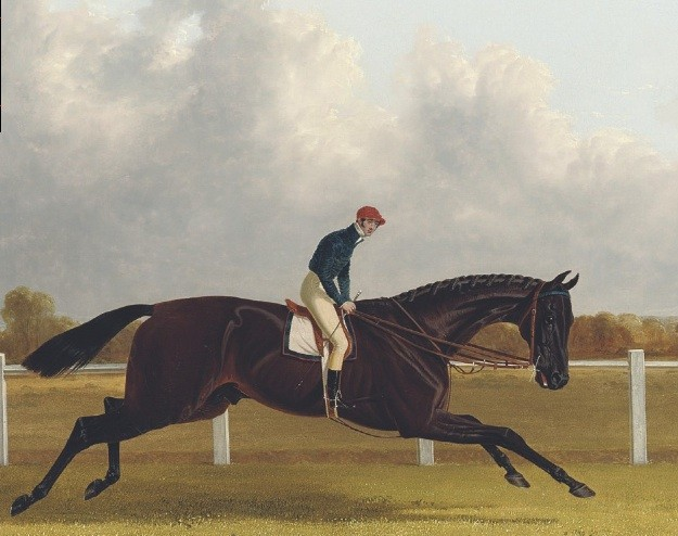 John Frederick Herring, Sen. (1795-1865) Major Yarburgh's brown colt, Charles XII.