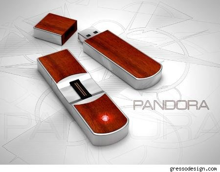 The African Wood Pandora USB Flash Drive