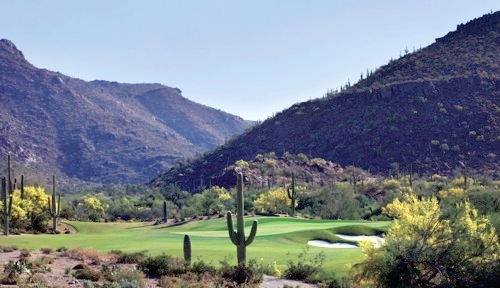 Ritz-Carlton GC, Dove Mountain, Hole 4