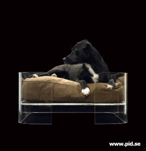 acrylic dog bed