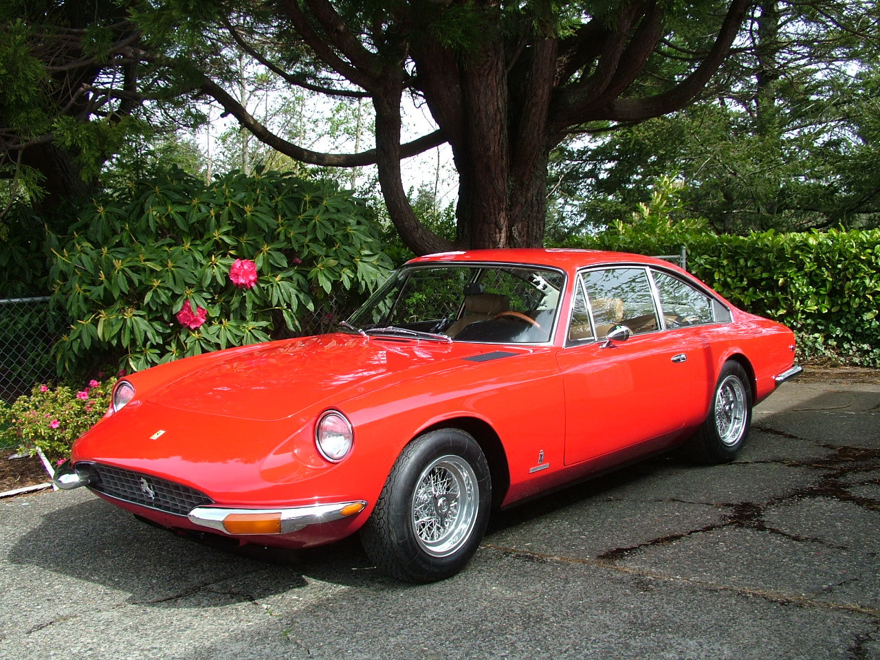 1970 Ferrari 365 GT2+2