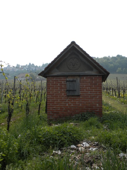 Stuttgart Vineyard: Ancient Toolshed