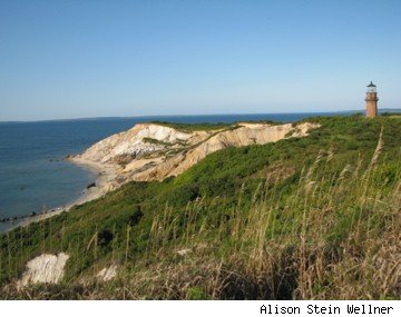 Picture of Martha's Vineyard