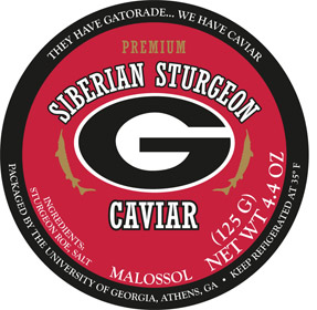 uniersity of georgia caviar