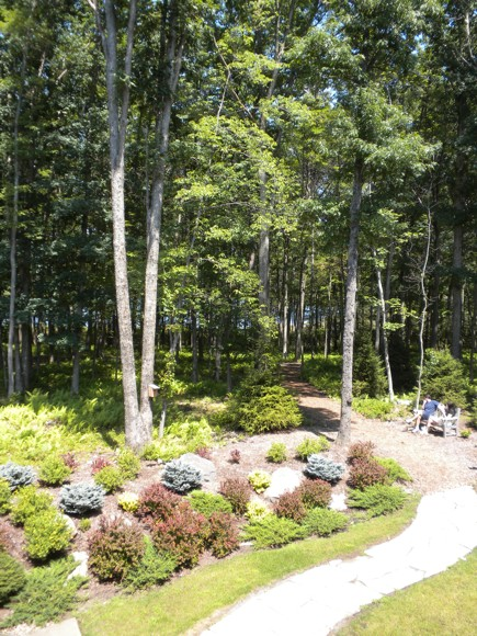 Fitness Path and a Lone Man at Lodge at Woodloch