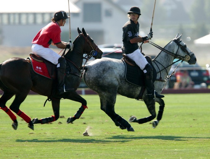 Polo Matches at the Bridgehampton Polo Club (Blue Star Jets Field)