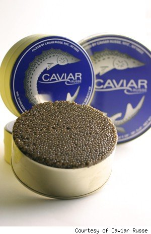 More from Caviar Russe