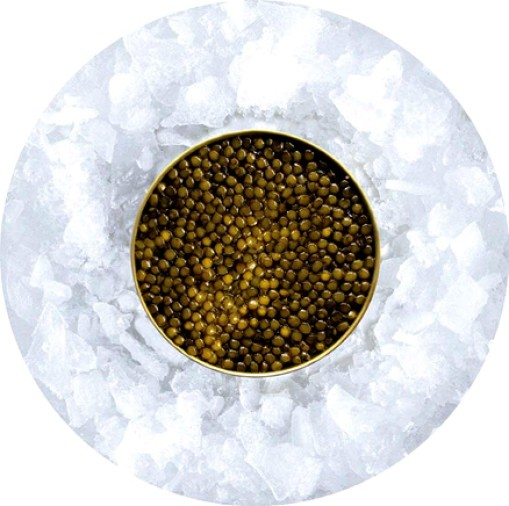 karat caviar