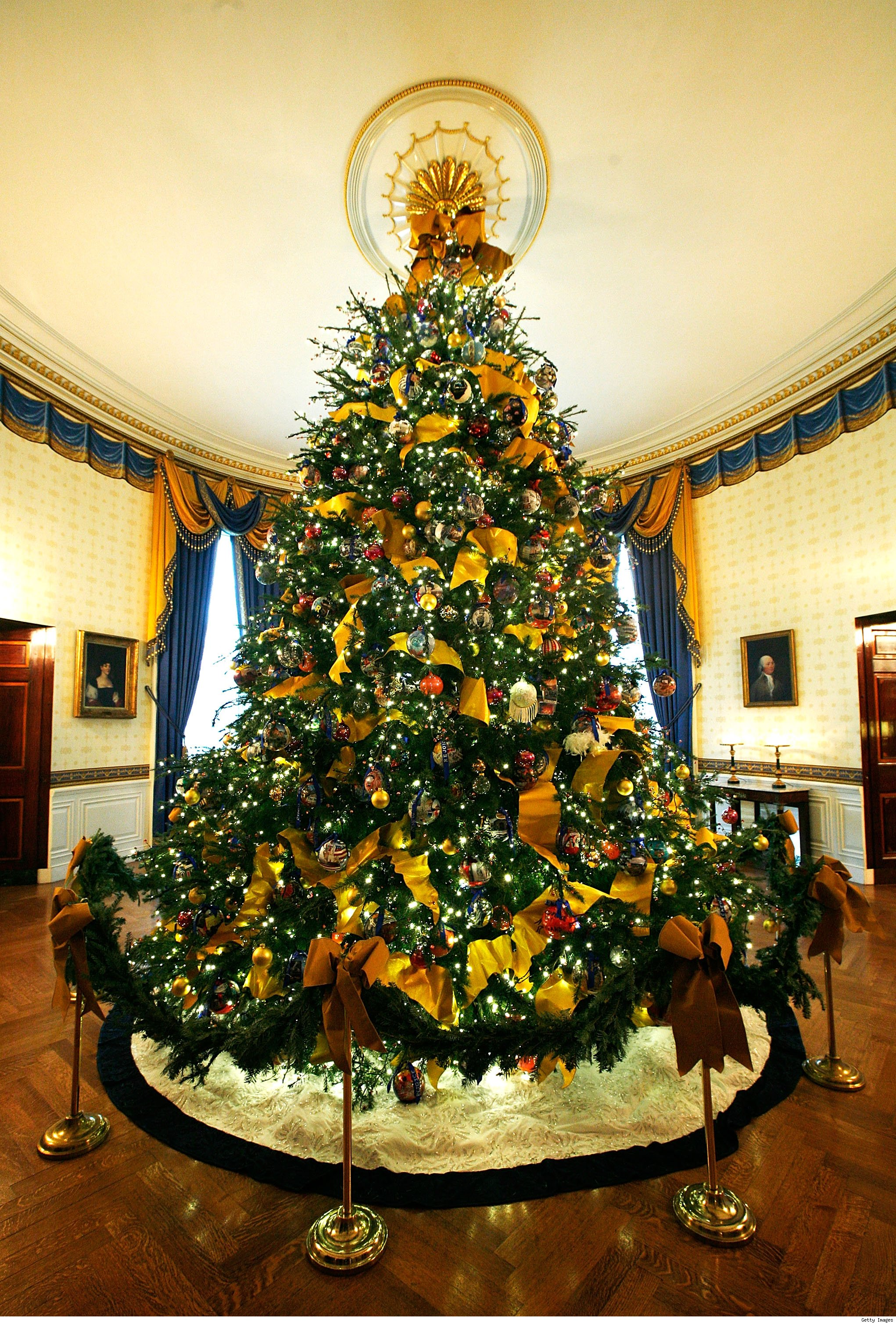 The 2009 Official White House Christmas Tree