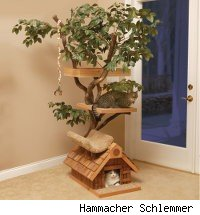 Gift Your Cats a Tree House Complete With a Real Tree