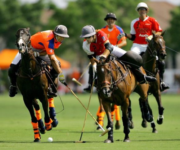 sandy lane polo