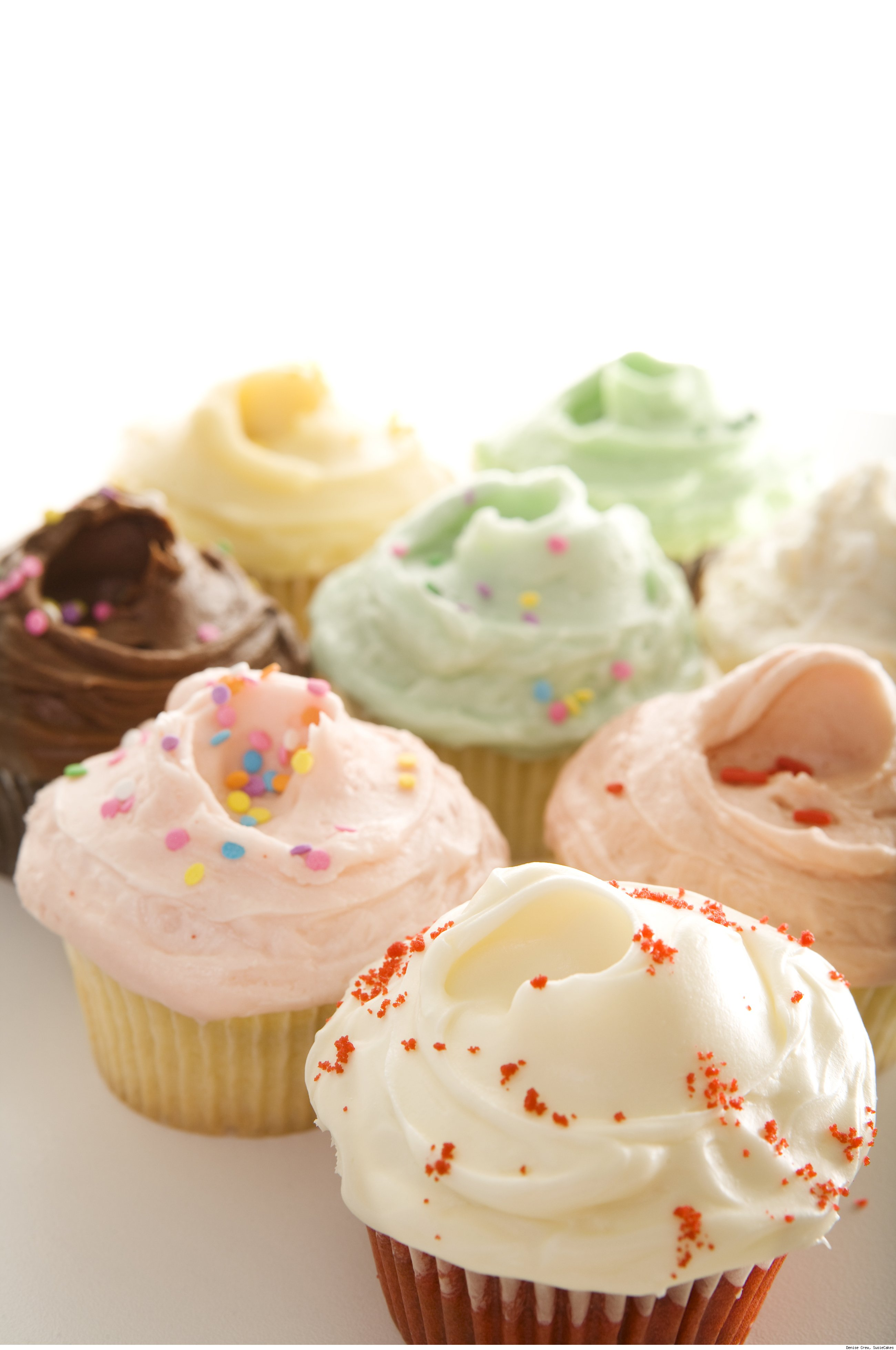Cupcakes by SusieCakes.