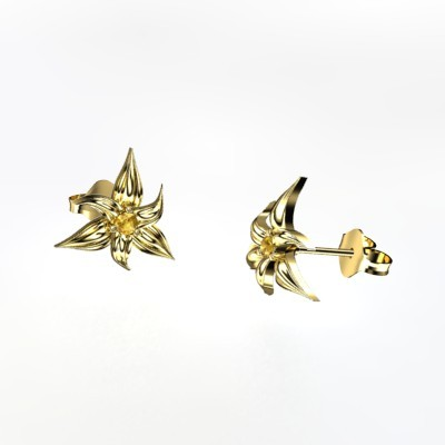 Stargazer Earrings (14k yellow gold with citrine)