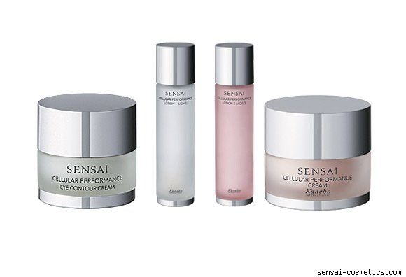 Kanebo's Sensai skincare line
