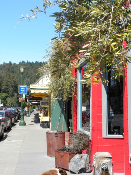 Guerneville, Chic-Shabby Small Town